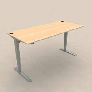 Zit sta bureau met beuken blad